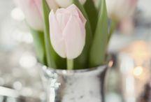 Flower and Garden Glam