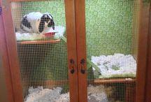 Bunny cage DIY
