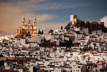 Trip to Spain / by Jill George