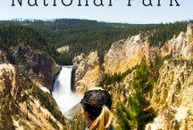 Montanna Yellowstone