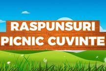 Picnic Cuvant / Raspunsuri Picnic Cuvant