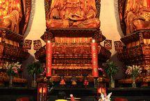 Buddha / Un Risvegliato