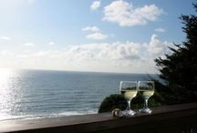 Oregon Beach Vacation Homes / Plan the perfect Oregon Coast vacation at these available rental homes!