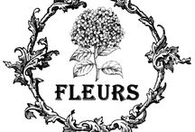 szöveg virág fekete-fehér transzfer / flower text black & white transfer Vintage