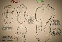 body men anatomy