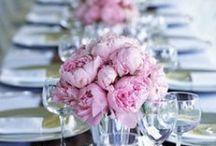 Flowers and Beauty / simple beauty. my zen board | www.onfoodandwine.com