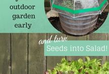 Garden DIY Ideas / DIY and projects for the Garden