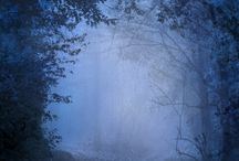 Explore Nature  / by Karen Guanzon-Yalong