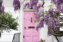 pretty in pink \\ aromatique