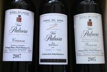 Wines / Mis vinos, en copas y en botellas  / by Alberto Sánchez