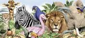 állatos képek