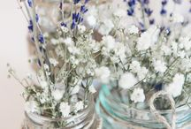 Efi baby flowers
