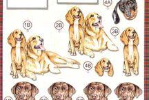 3d-Honden