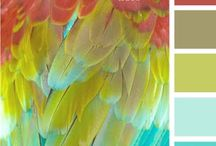 THE COLOR BOARD / Color that go fantastically together / by Terri Toler