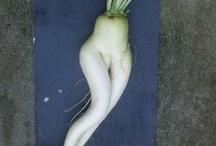 Veggie vigor / by Roxanne Townshend