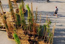 Landscaping&turban design