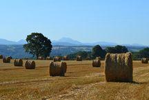 Les Combrailles | Auvergne / De mooie streek 'les Combrailles' in het departement Puy-de-Dome (63) in de Auvergne (Frankrijk)