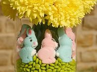 Eαsʈєr / Decorations, Recipes and Cards to celebrate the Easter Holiday! / by Cindy Gaccione
