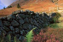 My love for Scotland!! / by Sandi Lundberg