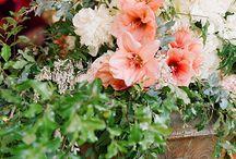 Ethereal Herb Garden Wedding