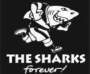 Sharks rugby