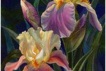 Květina a zátiší