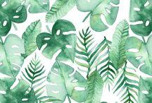 ++ Jungle ++