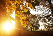 Jesień w Wągrowcu