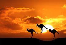 Vivir en Australia / Vivir en Australia - Descubre como vivir, trabajar y estudiar en Australia. Todo lo que necesitas para hacer tu sueño realidad. ¡Tu opción de calidad de vida!