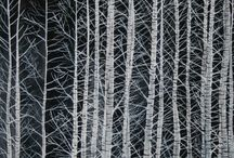 나무그림2