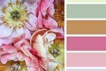 Kleur combi