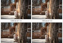 Photography Tips / by Justina Braun