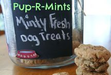 Dog Treats / by Donna Williams