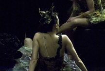 Everything was beautiful at the ballet. / by Jordon Shyanne Acker