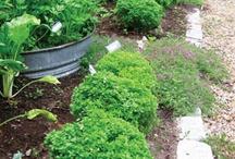 Outside and garden ideas.... / by Marlene Zalot Pirotte