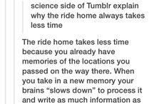 tumblr genius
