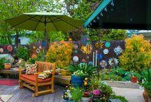 my backyard / by Christine Shuttleworth