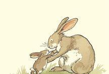 mondo coniglio