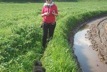 Mr Wellness - Walking / Walking Experience - Castelli Romani, Italy