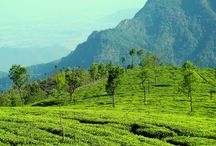 Ooty Holiday packages / ‎Ooty‬, located on ‪#‎Nilgiri‬ Hills has got everything for a newlywed couple.