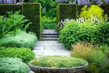 Garden-Famous Ones