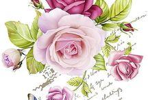virágok, lepkék