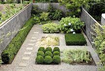 Rastliny záhrada