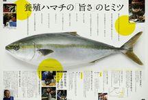 雑誌 広告 デザイン