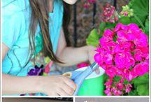 Bloemen drogen & natuur dingen