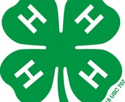 4-H project ideas / 4-H ideas, projects and demonstrations.