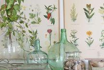 Botanical inspiratian