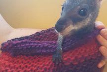 Mindfull Knitting