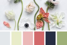 A.color palette