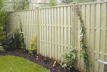 Fence and Shed